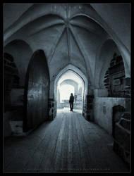 Asylum by Pajunen
