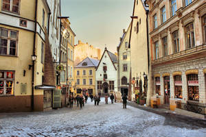 Tallinn City Life by Pajunen