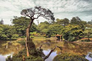 Shinjuku Gyoen Garden by Pajunen