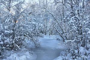 Frozen World by Pajunen