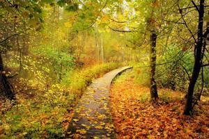 Last October by Pajunen