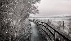 The Walk by Pajunen