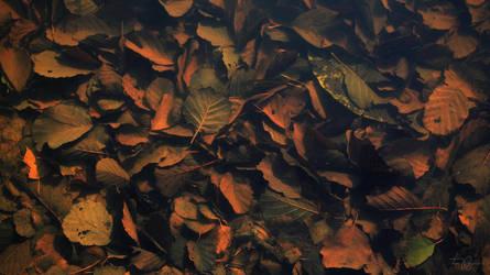 Leaves Underwater by Pajunen