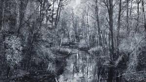 Monochrome River by Pajunen