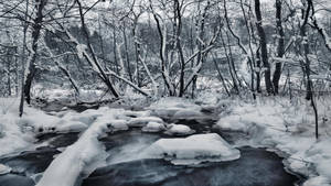 Snowy River II by Pajunen
