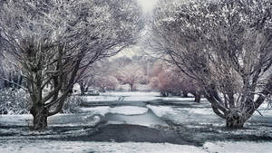 Walk in the park II by Pajunen
