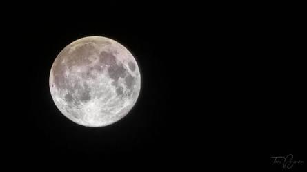 Full Moon by Pajunen