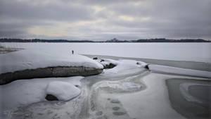January Seashore by Pajunen