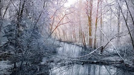 Winter Creek by Pajunen
