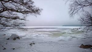 Winter Seashore by Pajunen