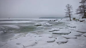 February seashore II by Pajunen