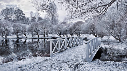 Frozen Park by Pajunen