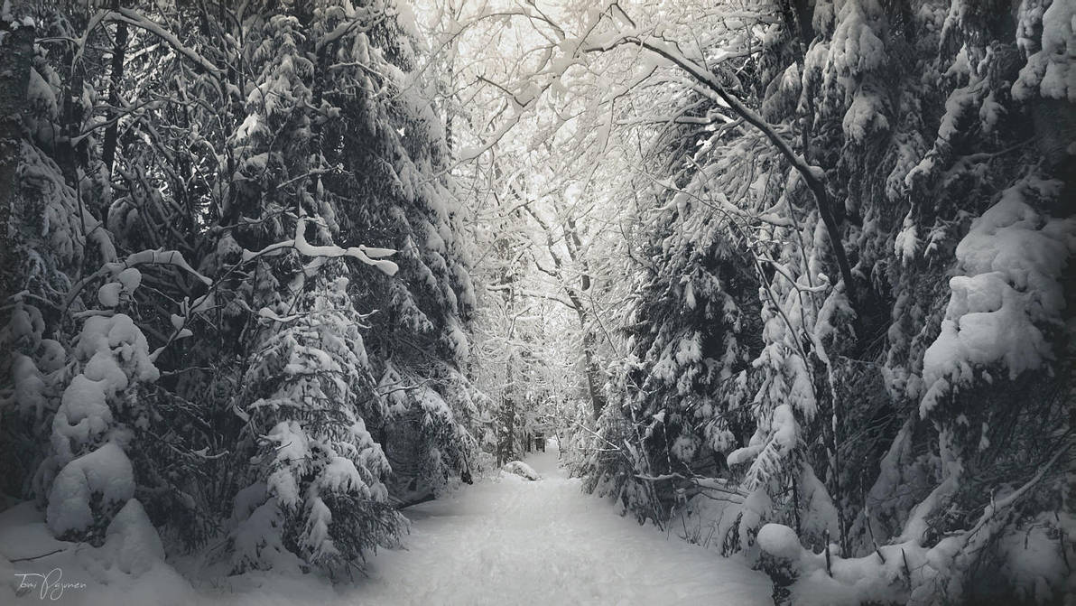 Luminen Taival by Pajunen