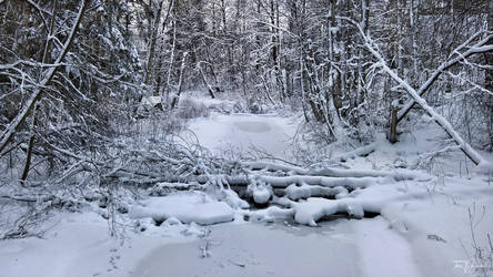 Snowy Brook by Pajunen