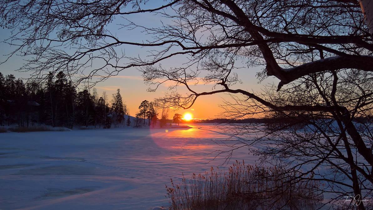 January Evening by Pajunen
