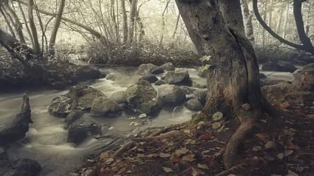 River Down Below by Pajunen