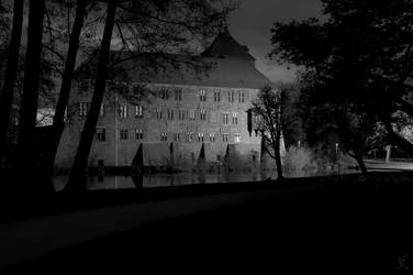 Winsen Castle Black-White by Usagi-Atemu-Tom