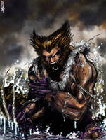 wolverine by thequickbrownfox
