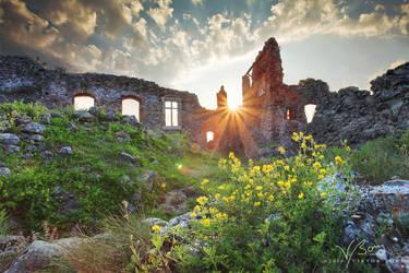 Land of Wonders by gummaid