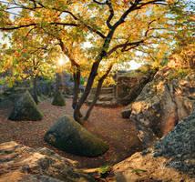 Mythical Autumn by gummaid