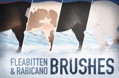 Custom Brushes | Fleabitten Grey and Rabicano by dat-inu