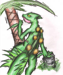 Sceptile, king of the forest by ice-hand7