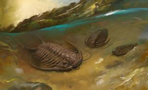 Trilobits by EldarZakirov