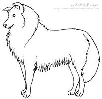 lineart - Rough Collie by ANBU-Flashez