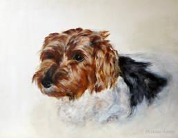 Jasper by louise-rabey