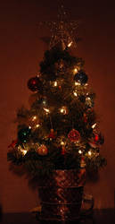 Miniature Christmas Tree 1 by HappyWorker