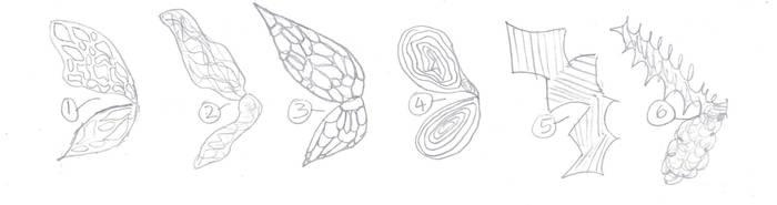 Fairy Wings Doodle by VentusAquaTerra