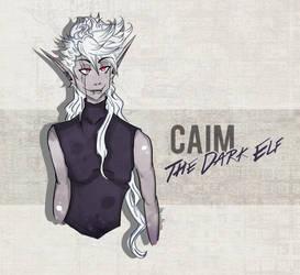 Caim, The Dark Elf! by inanoakuma