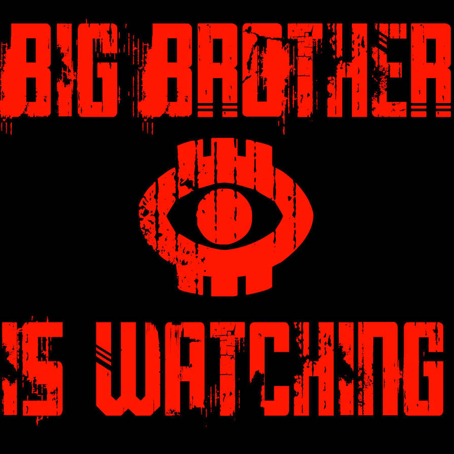 Big Brother is Watching by tbunty52094
