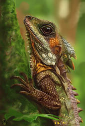 Little Dragon by Arasteia