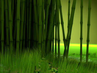 Bamboo Field by OrcunA