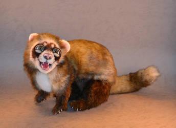 'Roscoe' Ferret by mellisea