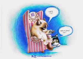Grumpy Cat hates TV 2013 by Keymagination
