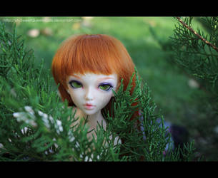 Wild Beauty by MySweetQueen-Dolls