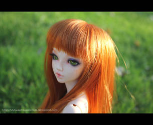 Last Summer Memories by MySweetQueen-Dolls
