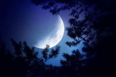 Night moon by Thunderi