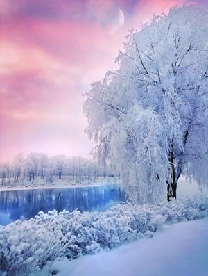 Beautiful Winter day by Thunderi