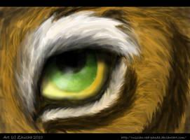 Eye by Zhucha