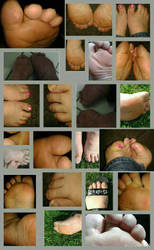 feet 2015 by traceymcbride