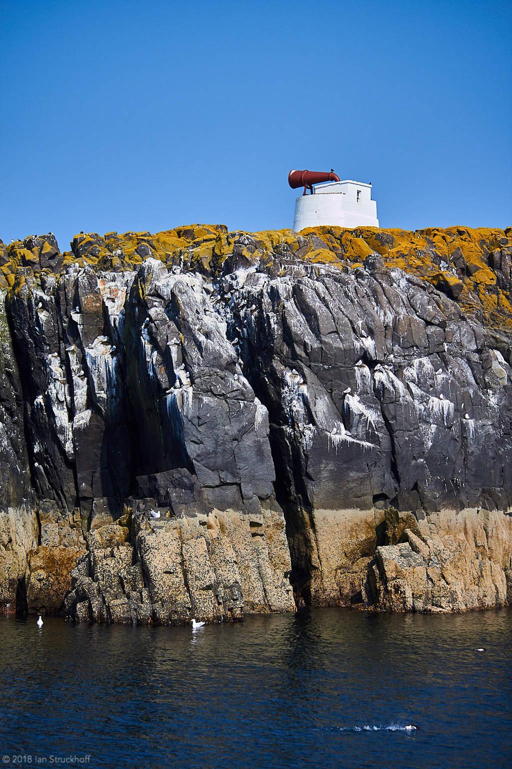Isle of May - 25 by IanStruckhoff