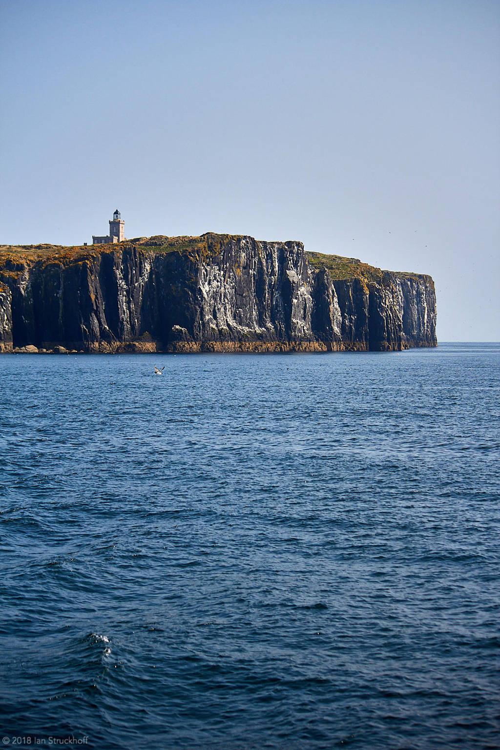 Isle of May - 26 by IanStruckhoff