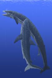 Whale Killer by TrollMans