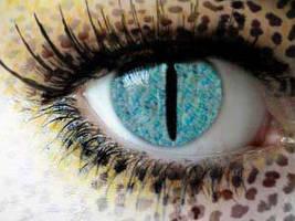 Cat Eye  2 by KillerBlueEyez