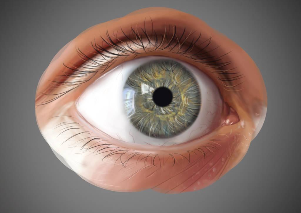 Realistic eye exercise by Syddarta