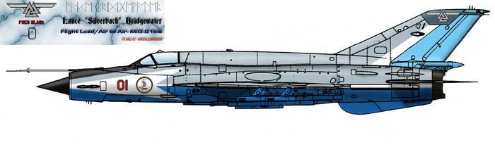 MiG-21bis: Aesir Flight by goldenhide