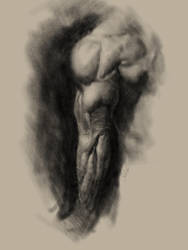 Tricep in Procreate by adammiconi